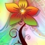 flower-77256_640